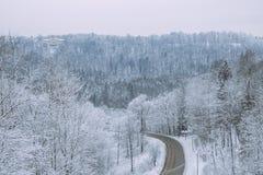 在拉脱维亚的冷的冬天 白色自然和冷气候 免版税库存图片