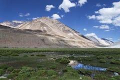 在拉达克山中的绿色池塘 免版税库存照片