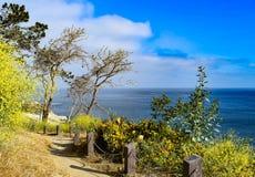 在拉霍亚小海湾的历史的海岸步行在圣地亚哥,加利福尼亚 免版税库存图片