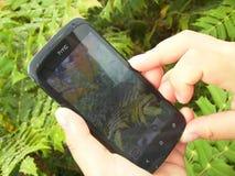 在拍与智能手机的雨以后照片 图库摄影