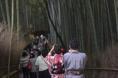 在拍摄照片的和服的夫妇在竹森林里 免版税图库摄影