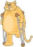 在拐杖的三脚猫 库存例证