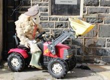 在拖拉机的绵羊, Sheepfest, Sedbergh, Cumbria 免版税图库摄影