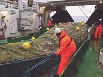 在拖网渔船的甲板的工作 图库摄影