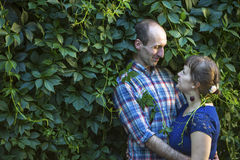 在拥抱在绿叶中的爱的夫妇 免版税库存照片