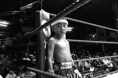 在拳击台的泰国年轻拳击手立场 免版税库存图片