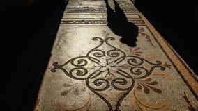 在拼花地板上的阴影 免版税库存图片