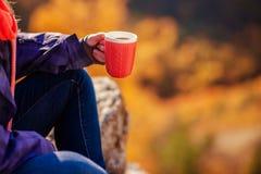 在拿着一个杯子茶的山女孩顶部 库存照片