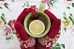 在拿着杯子的被编织的手套的手 库存照片