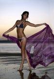 在拿着浮动明亮的织品的设计比基尼泳装的美好的时装模特儿站立在海滩 免版税库存照片