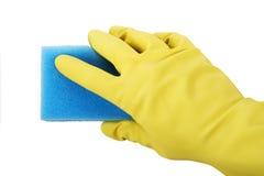 在拿着海绵的橡胶手套的手 免版税库存照片