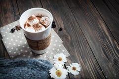 在拿着热巧克力用蛋白软糖的被编织的手套的手 库存照片