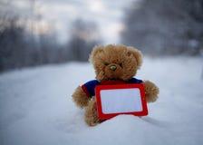 在拿着空白的Gorizontal框架的蓝色套头衫的玩具熊 库存照片