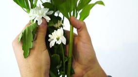 在拿着花,爱的手铐的男性手是罪行,禁止的秀丽,被限制的柔软,言论自由,时间 影视素材