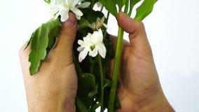 在拿着花,爱的手铐的男性手是罪行,禁止的秀丽,被限制的柔软,言论自由,时间 股票录像
