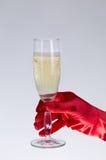 在拿着香槟的红色歌剧手套的女性手玻璃 免版税库存照片