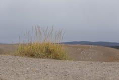 在挪威中间的美丽的沙丘 北沙漠在中央斯堪的那维亚在秋天 图库摄影