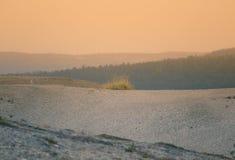 在挪威中间的美丽的沙丘 北沙漠在中央斯堪的那维亚在秋天 库存照片