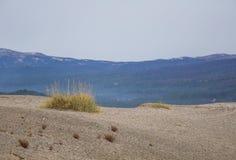 在挪威中间的美丽的沙丘 北沙漠在中央斯堪的那维亚在秋天 免版税库存照片