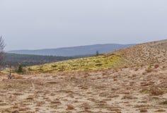 在挪威中间的美丽的沙丘 北沙漠在中央斯堪的那维亚在秋天 免版税图库摄影