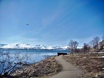 在挪威北部 免版税库存图片