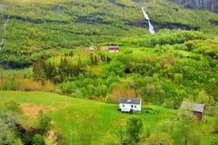 在挪威的本质的全景 Flom,挪威 免版税图库摄影