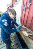 在挪威水域中捉住的巨蟹 库存照片