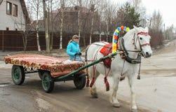 在推车的妇女骑马 库存图片