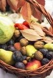 在推车的季节性果子产品 库存照片