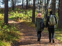 在握手和走通过一个公园的爱的年轻夫妇在一晴朗的秋天天 免版税库存照片