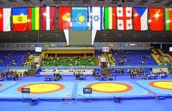 19在搏斗, Kyiv,乌克兰的国际性组织比赛 免版税库存照片
