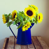 在搪瓷水罐的美丽的向日葵花束 免版税库存照片