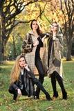 在摆在中央公园的秋天典雅的衣裳的三个美好的年轻模型 免版税库存图片