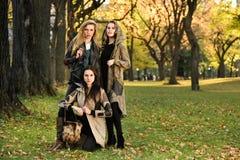 在摆在中央公园的秋天典雅的衣裳的三个美好的年轻模型 库存照片