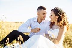 在摆在日落w的领域、恋人或者新婚佳偶的美好的夫妇 免版税库存图片