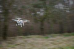在摇摄行动的飞行寄生虫 图库摄影