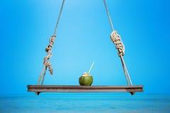 在摇摆的新鲜的鲜美椰子在热带海背景 图库摄影