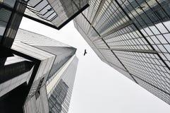 在摩天大楼之间的香港birfd 免版税库存图片