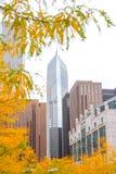 在摩天大楼的看法从公园 库存照片
