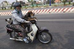在摩托车的生活 免版税图库摄影