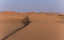 在摩洛哥的撒哈拉大沙漠 免版税库存图片