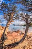 在撒丁岛海岛,肋前缘Smeralda,意大利上的Capriccioli海滩 库存图片