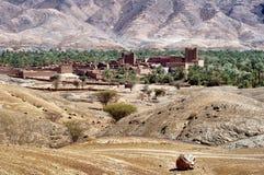 在撒哈拉大沙漠点心的绿洲 库存图片