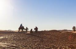在撒哈拉大沙漠,摩洛哥的骆驼有蓬卡车 库存图片