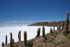 在撒拉族从渔夫` s海岛的de uyuni saltflats的看法在玻利维亚 免版税库存图片