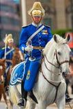 在支架前的皇家卫兵。2013年6月8日,斯德哥尔摩,瑞典 免版税库存照片
