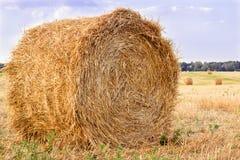 在收割期,在乡下的干燥干草堆调遣 库存图片