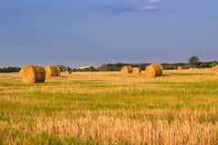 在收割期,在日落的干燥干草堆调遣 库存图片