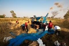 在收获期间,一个小组泰国农夫在东北泰国使用一个机器分离米仁,在米领域 免版税库存图片