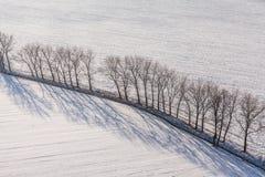 在收获的鸟瞰图在冬天调遣 免版税库存照片